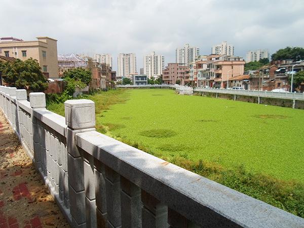 京山第六村民小組步行道升級改造、林邊塘魚塘岸線升級改造工程