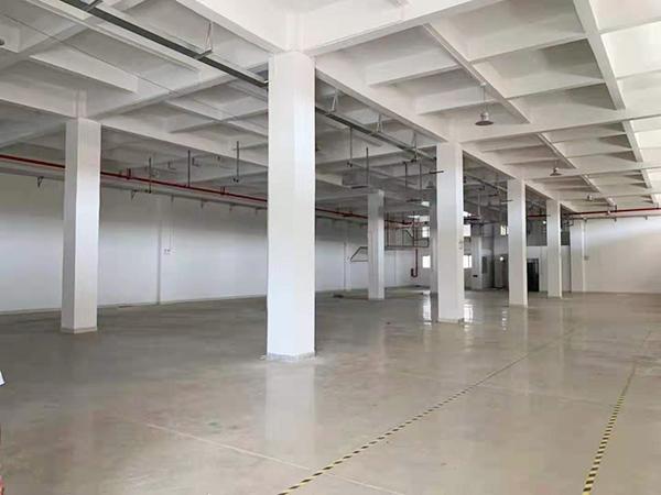 嶺廈 一樓 700平方 現成水電辦公裝修 10元每平米