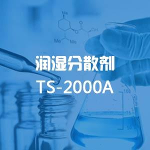 TS-2000A润湿分散剂