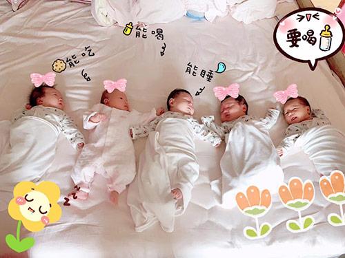 宝宝护理项目