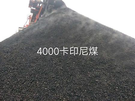 4000卡印尼煤