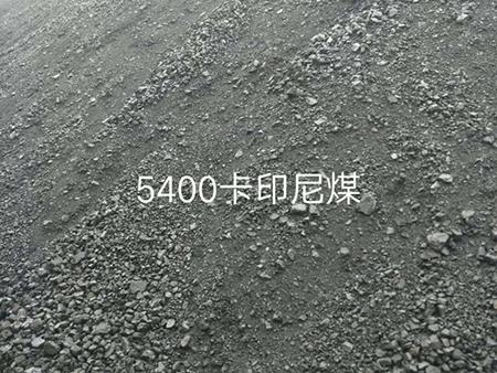 5400卡印尼煤