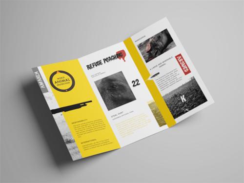 宣传单/折页