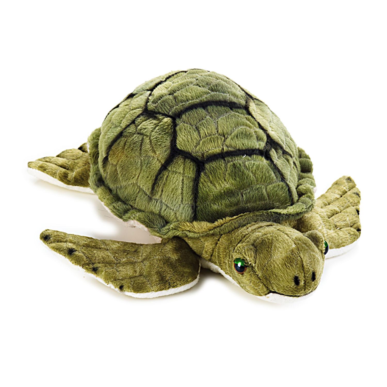 "12""海龟"