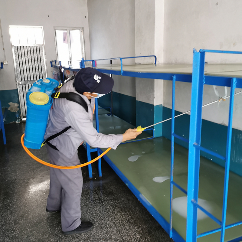学校_东坑附近的臭虫防治方案_百辉有害生物防治