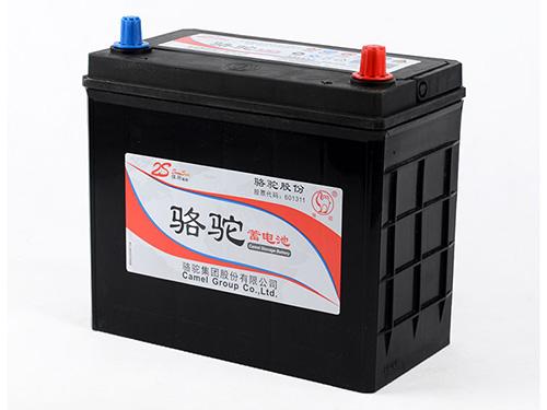 骆驼汽车蓄电池图片