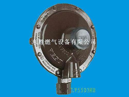 美國REGO調壓器 原裝進口燃氣調壓閥
