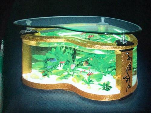 各種異形魚缸