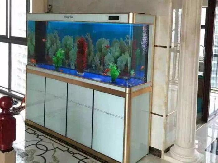 现代形风水鱼缸