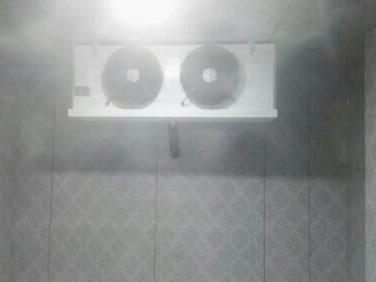 冷冻库排气
