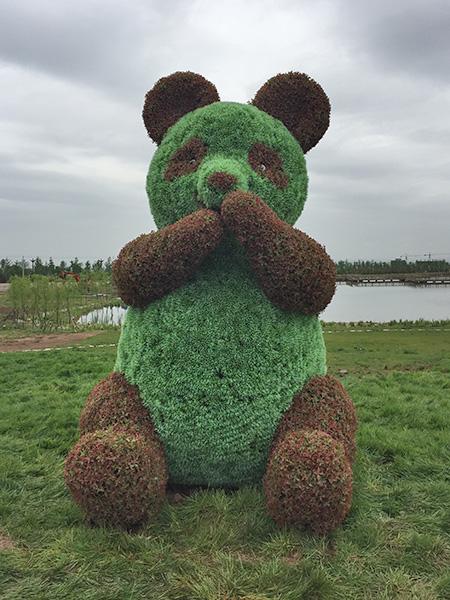 熊猫植物绿雕