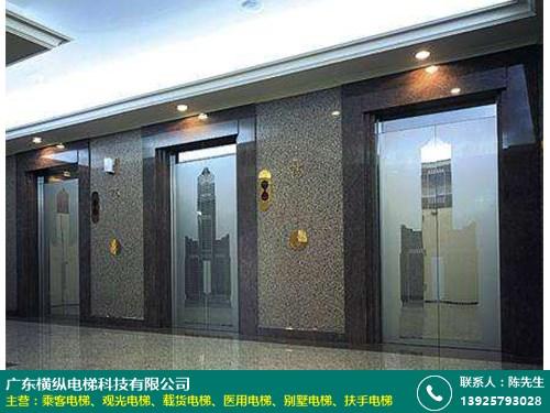 橋頭專業乘客電梯價格 7層 小機房 小型 豪華 橫縱電梯
