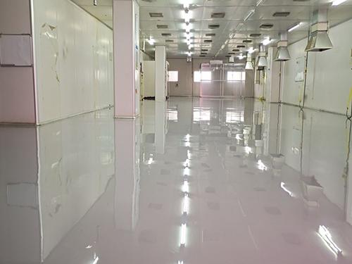 環氧防靜電平涂地坪研發