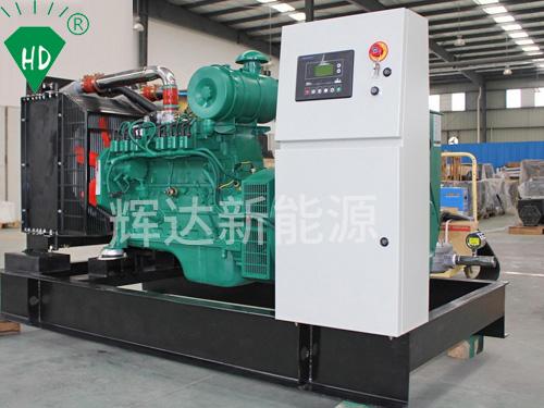 燃气发电机组 康明斯 新能源发电机组