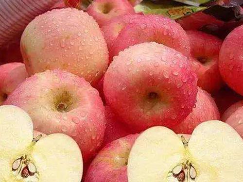 东莞苹果配送