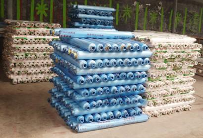 劃算的工程地膜就在辛店金發塑料廠 氣墊膜生產廠家