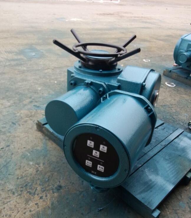 DZW20-24-A00-WK多回转智能电动执行器