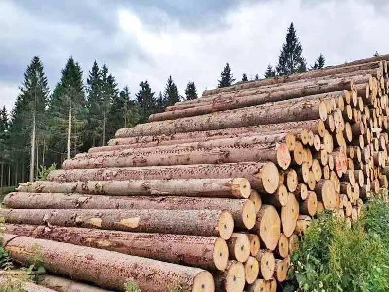 云杉木方加工