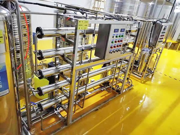 1吨二级全不锈钢纯水设备