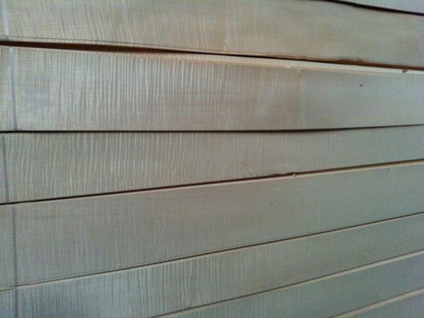 白影排骨影木皮
