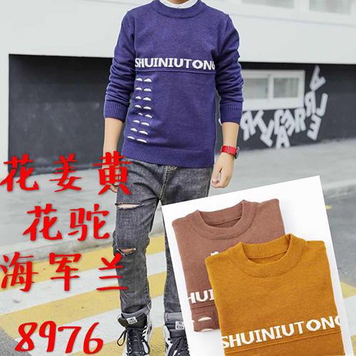 时尚男童毛衣8976