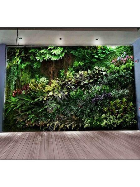 热带雨林植物墙-sl84
