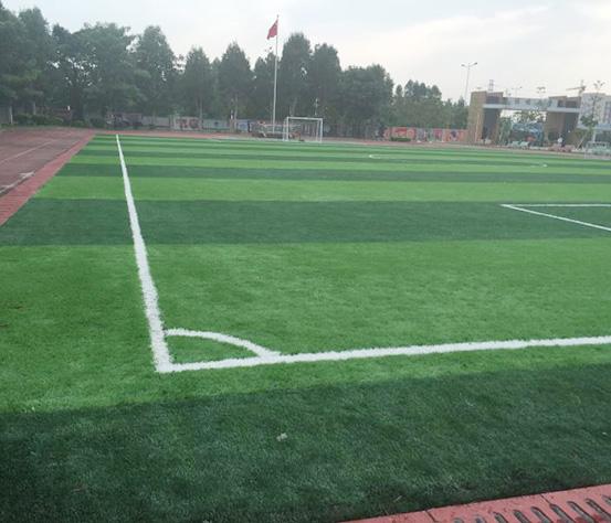 人造草坪足球场设计