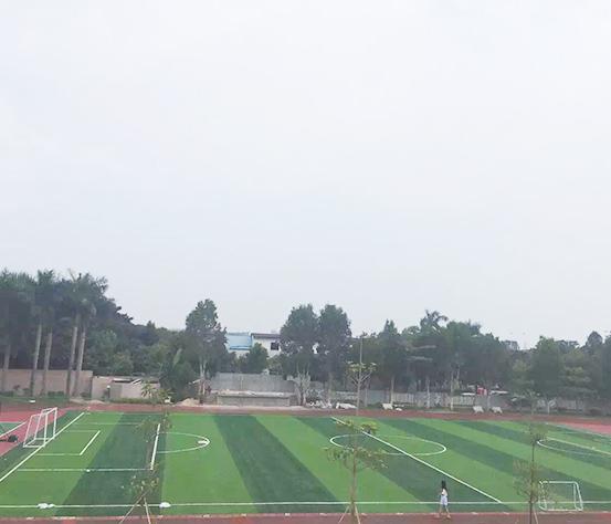 东莞人造草坪足球场营造
