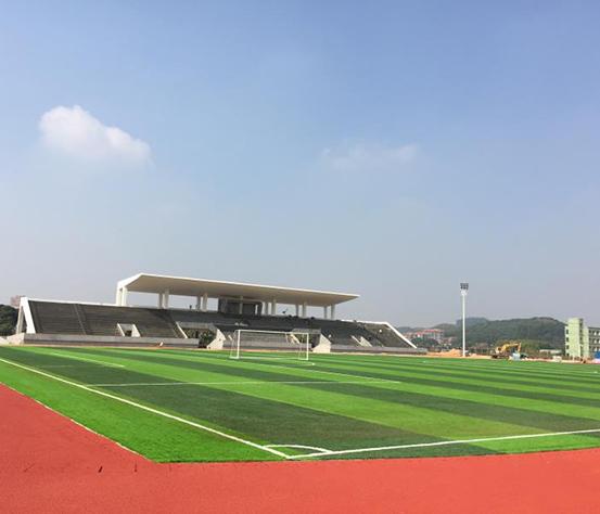 东莞人造草坪足球场