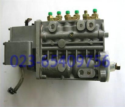 发动机油泵油嘴 6BT5.9东风康明斯高压油泵4988395 发电机组燃油喷射泵
