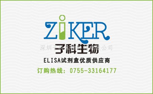 小鼠的CXCL16 ELISA試劑盒