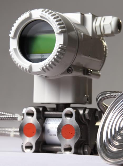 洛丁森卫生型差压液位计RP1001-SCCAB312NN2