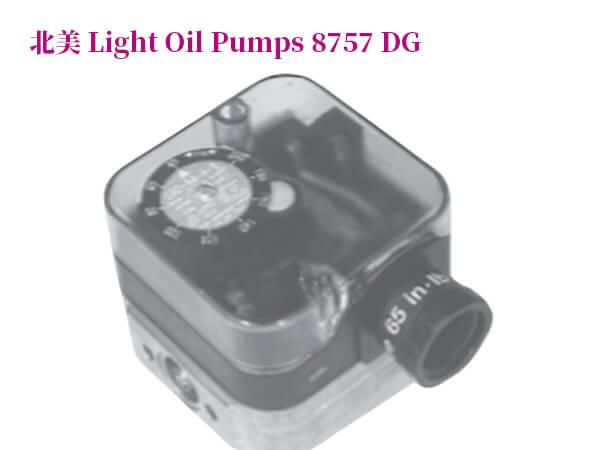 輕型油泵8757-DG