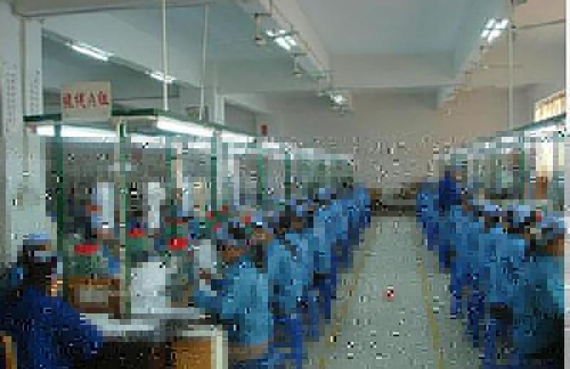 新型辦公高拍儀生產訂制_伍鴻電子_KC6A01_驅動軟件