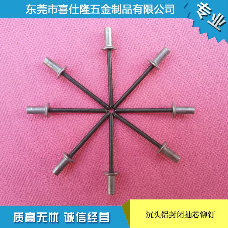 厂家生产高质量  沉头铝封闭抽芯铆钉3.2x8 价格优惠 欢迎购买