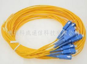 光纖跳線 長期供應SC尾纖網絡3米級電信級均有