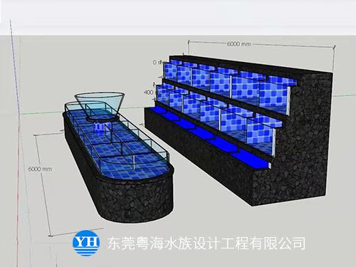 東莞海鮮池供應