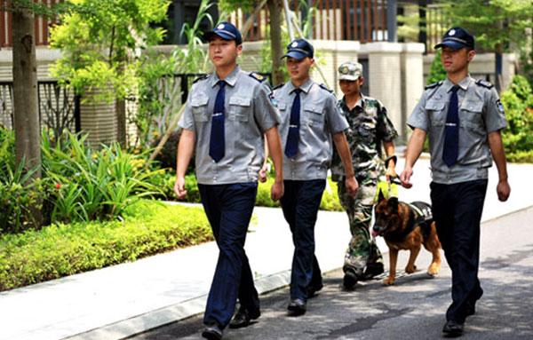 犬防保安服务